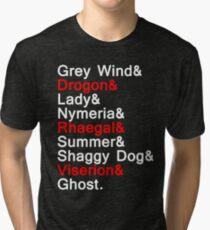 Direwolves & Dragons Tri-blend T-Shirt