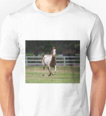 Running horse. T-Shirt