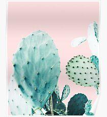 Kakteen, Kaktus, Kakteen drucken, Kaktus Kunst, Wüste, Natur, Pflanze, Minimalist, Modern Poster