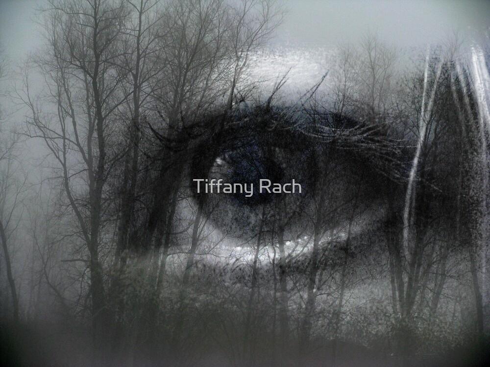 Eye of Wonder 2 by Tiffany Rach