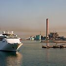 Cruise Ship Into Industrial Area by dbvirago