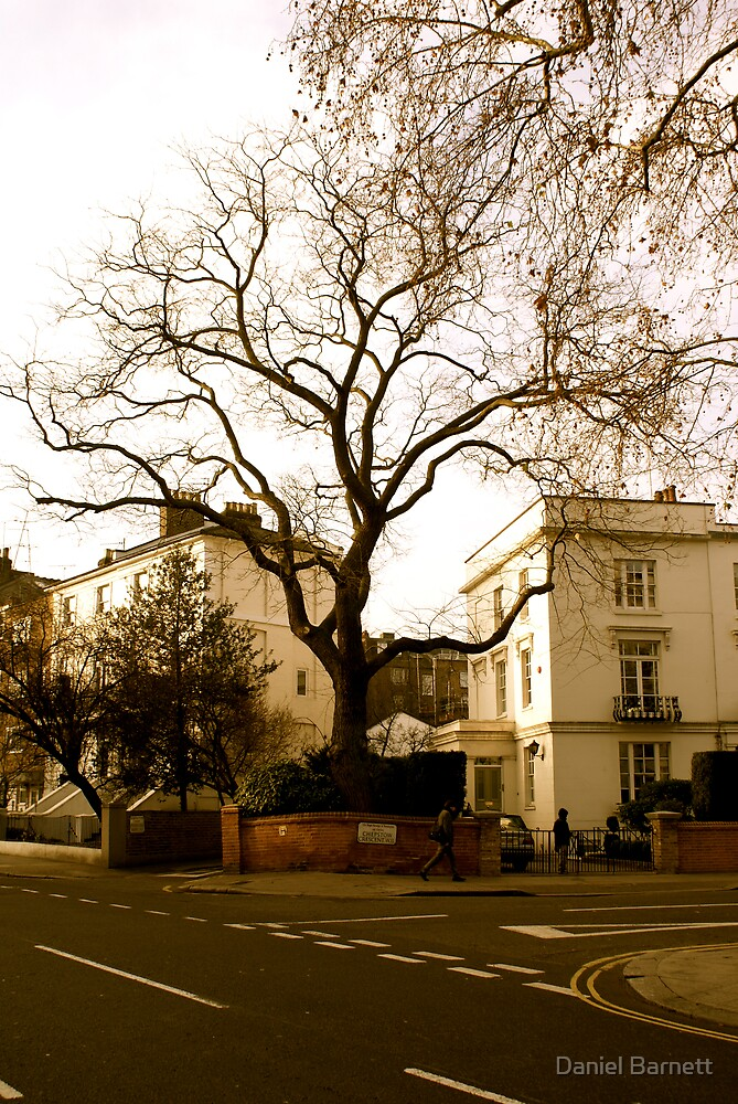Notting Hill stripped bare  by Daniel Barnett