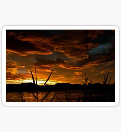 Karoo Sunset Sticker