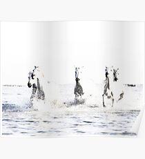 Wilde Pferde, weiße Pferde, Pferd drucken, Pferd Kunst, Wandkunst, Wanddekoration, Trendy print, Animal print, Interior Poster
