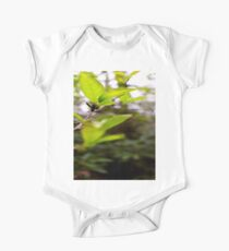Green Leaf in the Sun One Piece - Short Sleeve