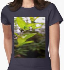 Green Leaf in the Sun Womens Fitted T-Shirt
