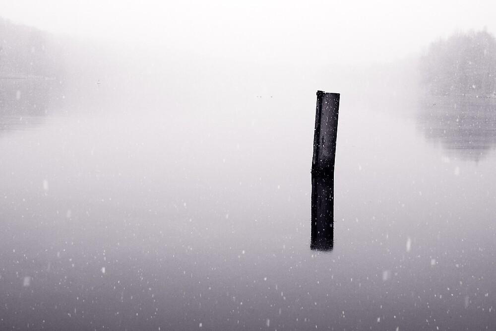 Winterscene by Ulf Buschmann