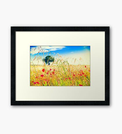 Poppies and tree in the distance Framed Print