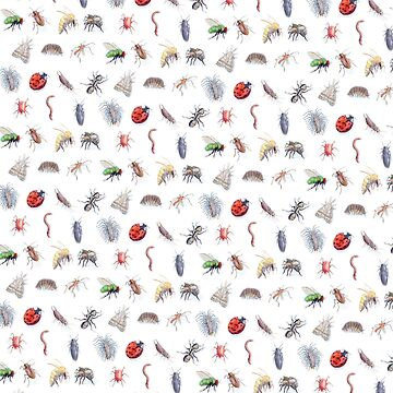 Bug Pattern by errickschild