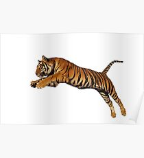 LEAPING TIGER Poster