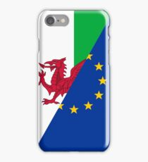 Welsh European Union Flag Phone Case iPhone Case/Skin
