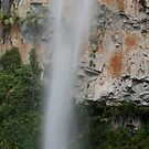 Purling Brook Falls, Qld by Brett Habener