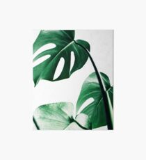 Monstera leaves,Tropical leaves, Green leaves, Leaf, Modern art, Wall art, Print, Minimalistic, Modern, Scandinavian print Art Board