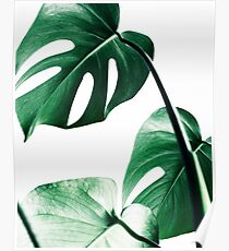 Monstera leaves,Tropical leaves, Green leaves, Leaf, Modern art, Wall art, Print, Minimalistic, Modern, Scandinavian print Poster