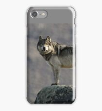 The Wolf's Appraisal iPhone Case/Skin