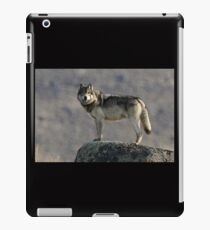 The Wolf's Appraisal iPad Case/Skin