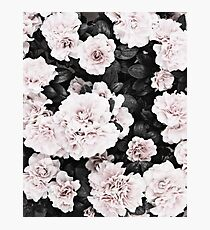 Flowers print, Scandinavian, Roses, Fashion print, Scandinavian art, Modern art, Wall art, Print, Minimalistic, Modern Photographic Print