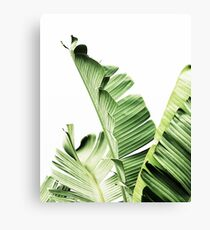 Banana leavesTropical leaves Green leaves Leaf Modern art Wall art  sc 1 st  Redbubble : wall art leaves - www.pureclipart.com