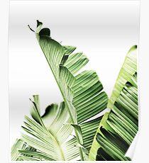 Banana leaves,Tropical leaves, Green leaves, Leaf, Modern art, Wall art, Print, Minimalistic, Modern, Scandinavian print Poster