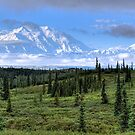 Mt. Denali by James Anderson