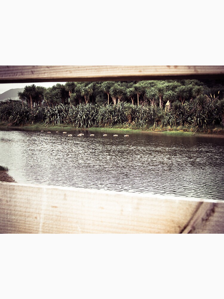 Ducks Through The Fence by urbanfragments
