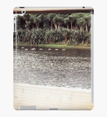 Ducks Through The Fence iPad Case/Skin