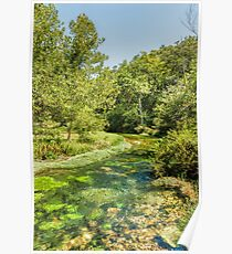 Alley Springs Serenity Poster
