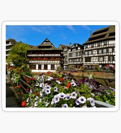 Strasbourg in bloom Sticker