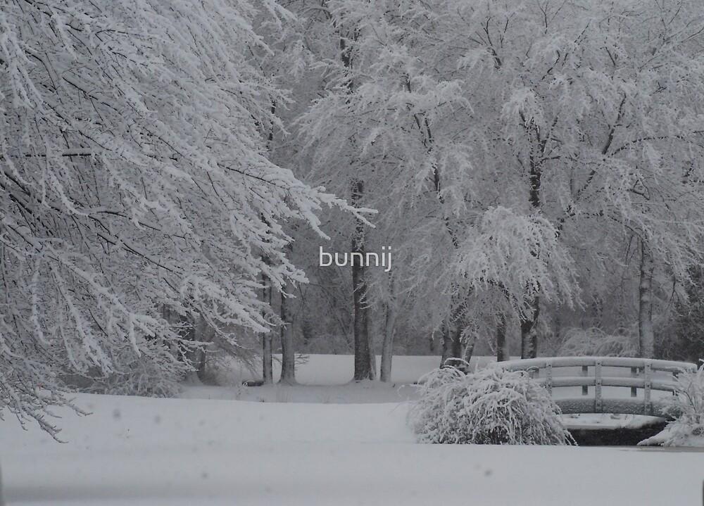 Fresh Snow Series III by bunnij