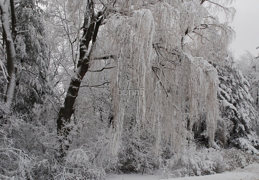 Fresh Snow Series V by bunnij