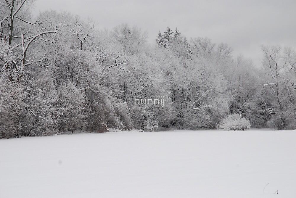 Fresh Snow Series VI by bunnij