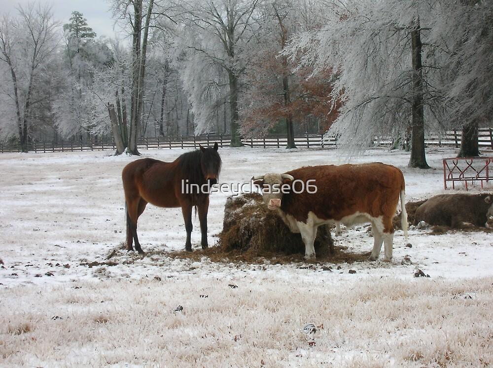Winter wonderland by lindseychase06