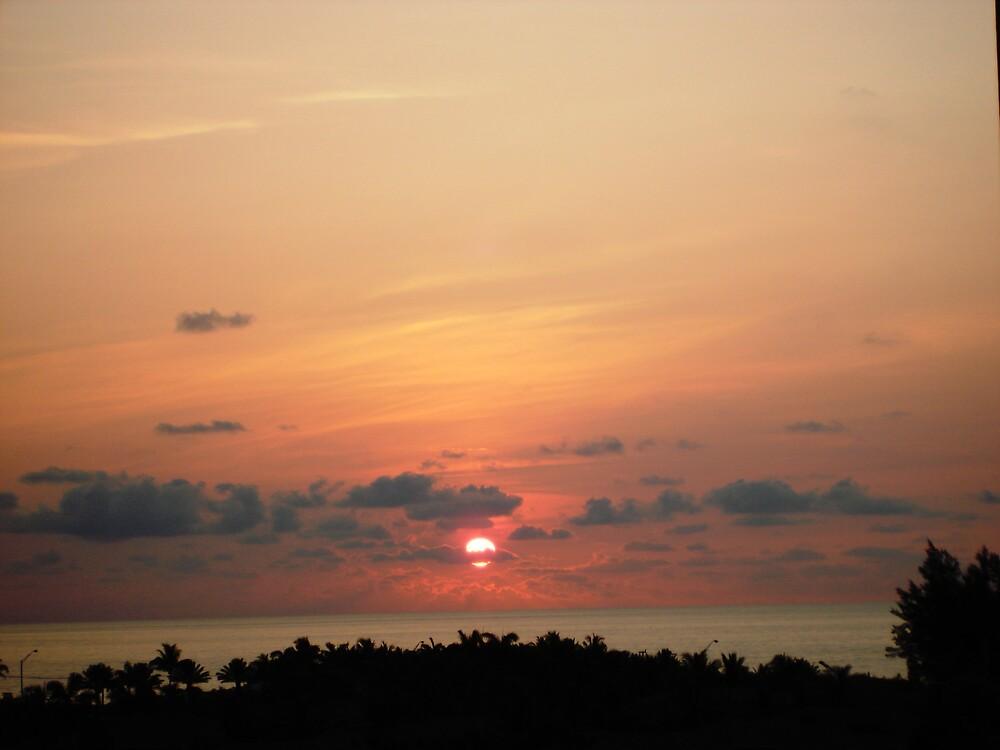 Sunrise by Dario  da Silva