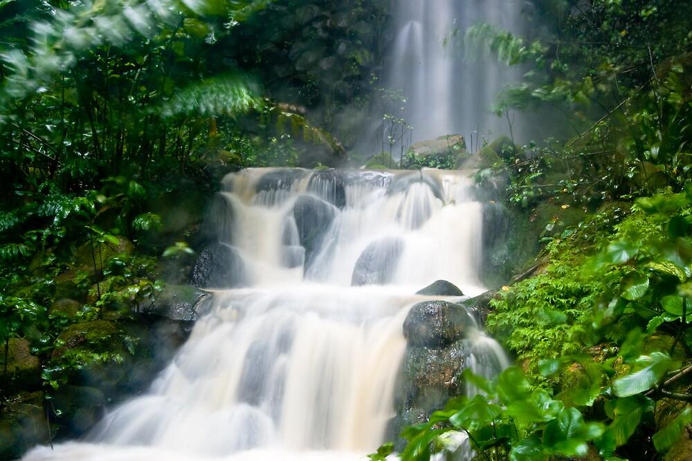 WaterFall by dpearce