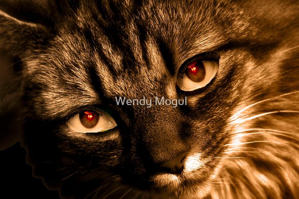 Evil Eye's by Wendy Mogul
