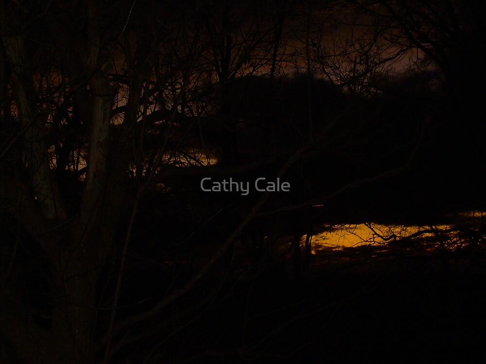 STORMY SUNSET 2 by Cathy Cale