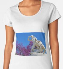 Sculpture Women's Premium T-Shirt