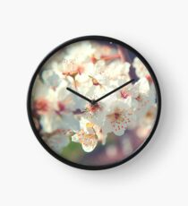 Spring breath Clock