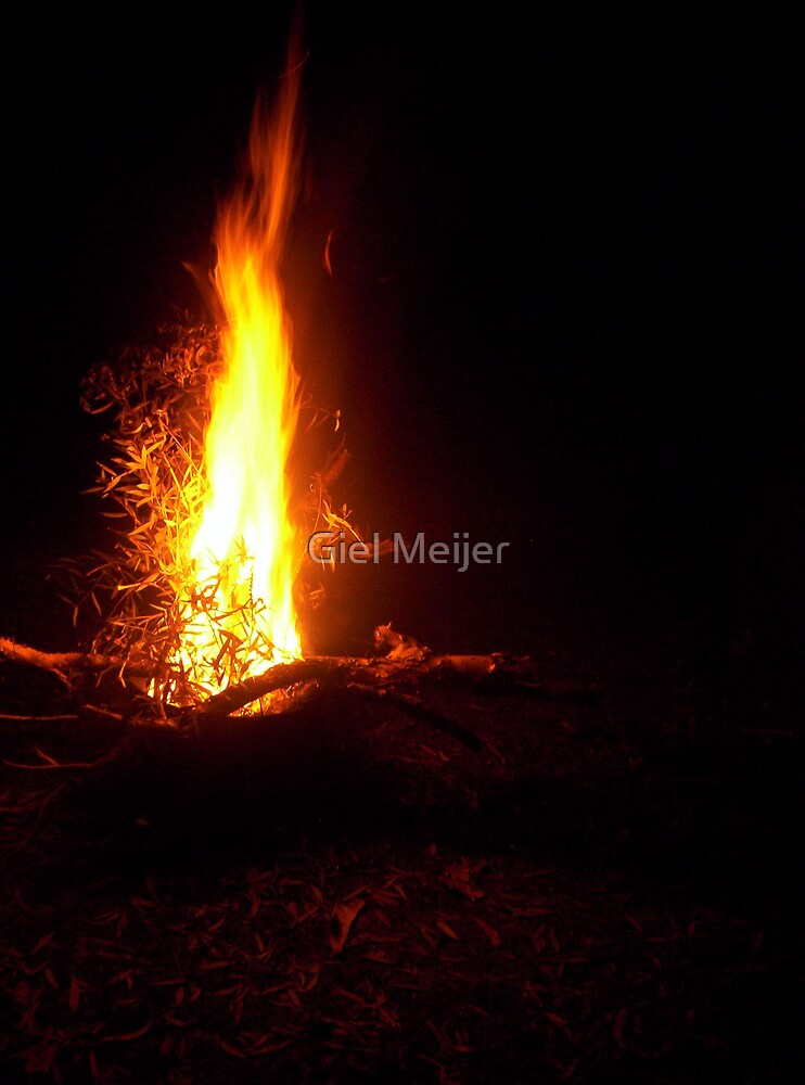 Fire by Giel Meijer