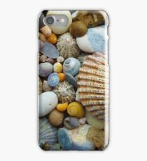 Sea Shells a plenty iPhone Case/Skin