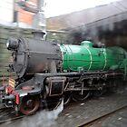 Steam Engine 3642, Sydney, Australia by muz2142