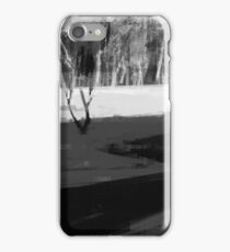 Snow lake iPhone Case/Skin