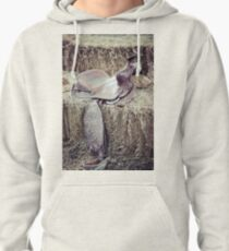 Vintage saddle on a hay bale Pullover Hoodie