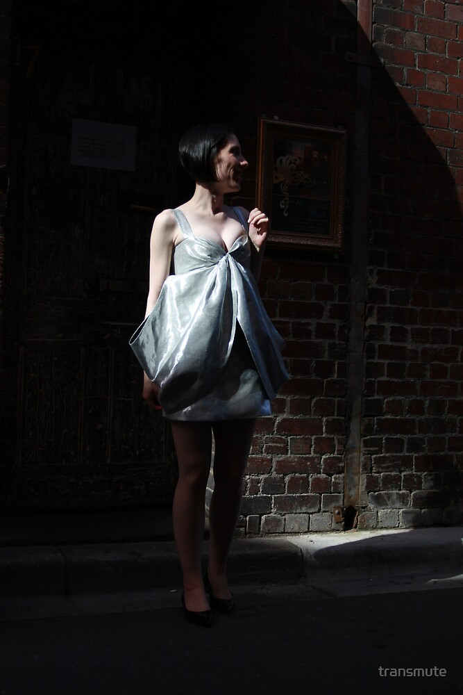 Her Day Is A Silver Frock by transmute