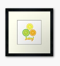 Cute Juicy Orange Lime Lemon citrus art Framed Print