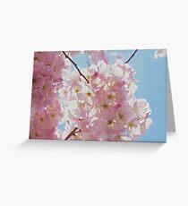 DC Blossom Greeting Card