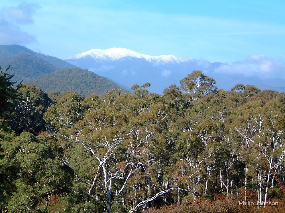 Great Alpine Road - Victoria, Australia by Philip Johnson