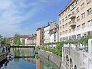 Lovely Ljubljana by Graeme  Hyde