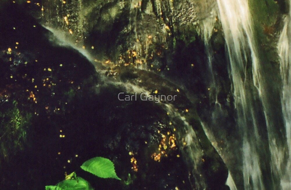 Transcend  by Carl Gaynor