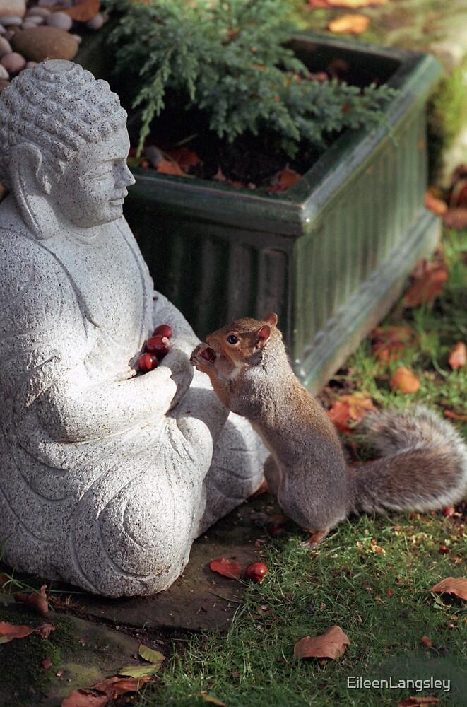 Buddha with squirrel by EileenLangsley